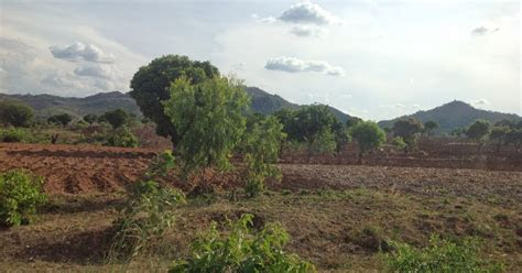 Catherine in Malawi: LANDSCAPE OF BLANTYRE TO LILONGWE PHOTOS