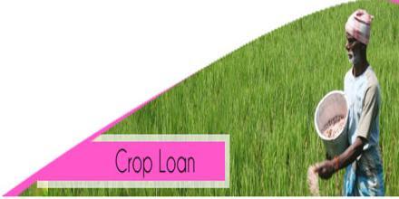 Image result for crop loans