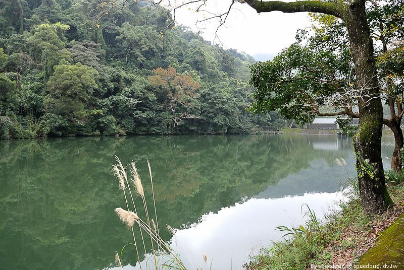 後慈湖 (38)
