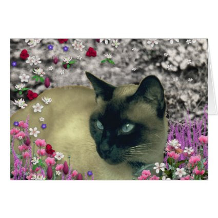 Stella in Flowers I – Chocolate Cream Siamese Cat Greeting Cards