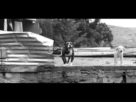 Sereno Moreno presenta: A Blanco y Negro (Video) | 2015 | Colombia