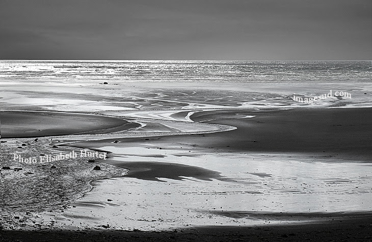 Low Tide Beach And Sea Landscape Photography Bw Black