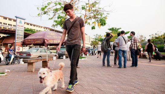 A man walks a dog through a park on Sothearos Boulevard in Phnom Penh last year.