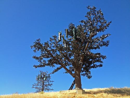 magic trees of electric stuff