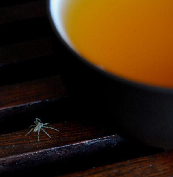 Teabugs