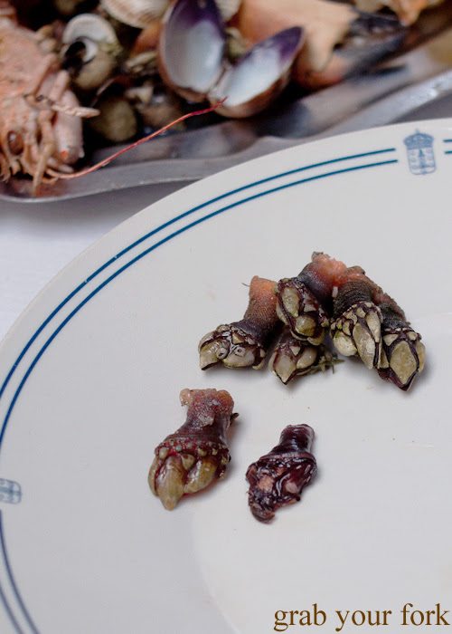 Percebes goose barnacles with and without shell from O Paladar seafood restaurant, A Coruna, Galicia, Spain