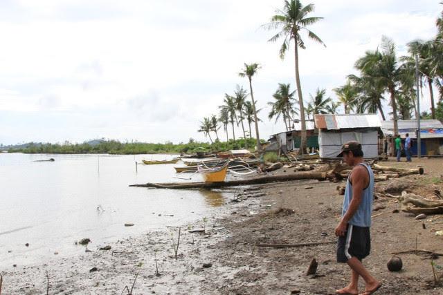 20150407-tacloban-mangrove-rehabilitation_25CAE8AF7B734BBF837495D8D776A2F2