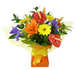 Vox 4 Flowers Cardboard Vase For Bouquets