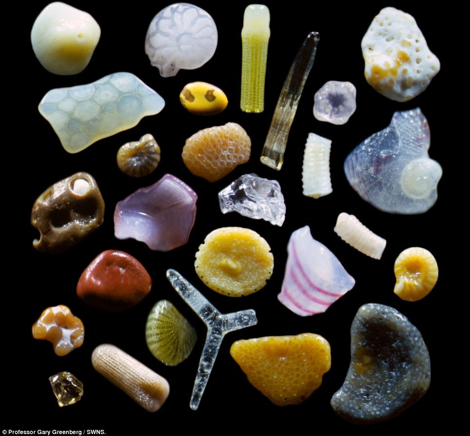 Colourful: The miniature particles are exposed as fragments of crystals, spiral fragments of shells and crumbs of volcanic rock.