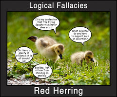 Logical Fallacies 3