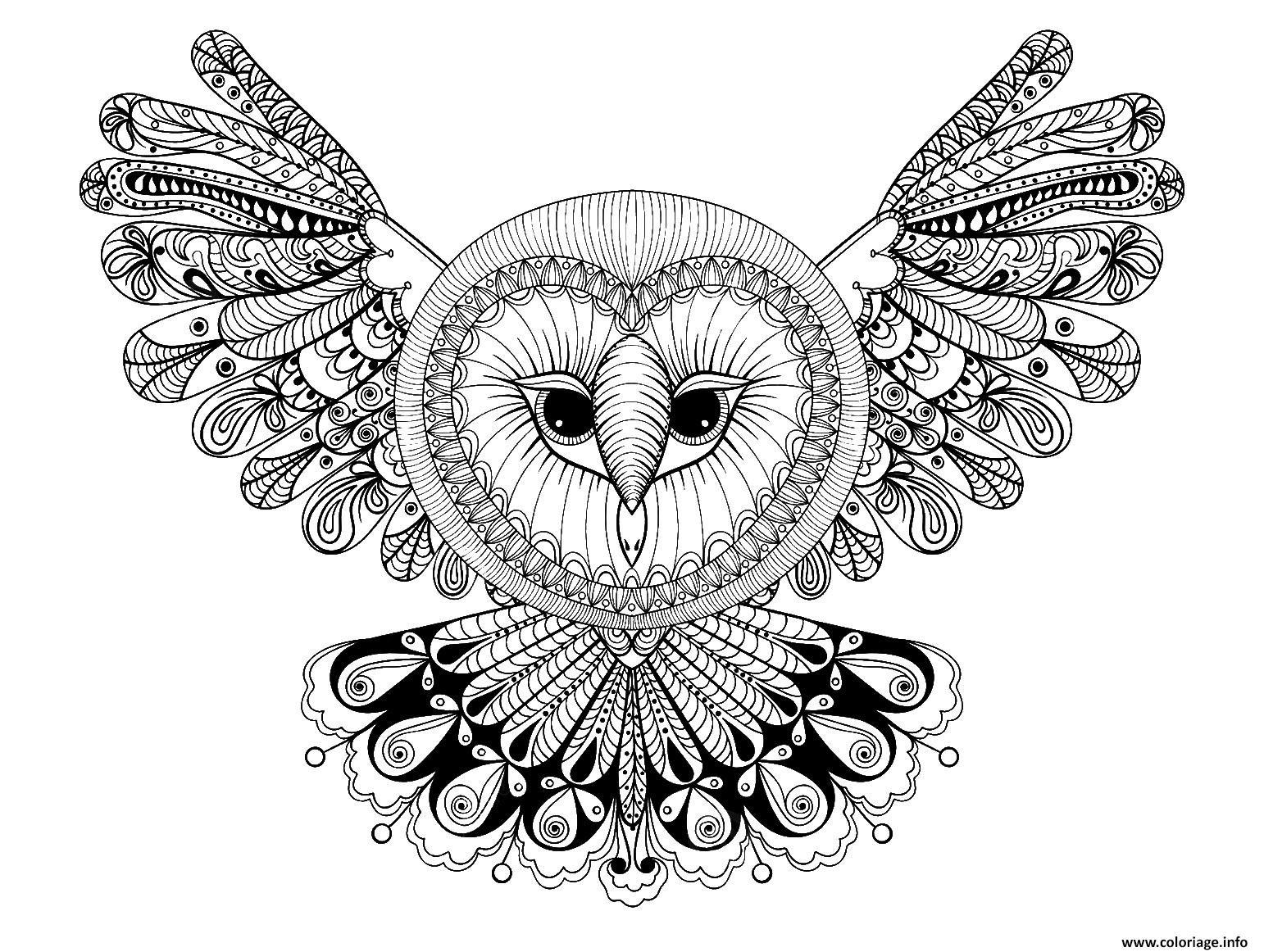Coloriage Hibou Avec Grande Tete Forme Mandala Adulte Animaux Dessin  Imprimer