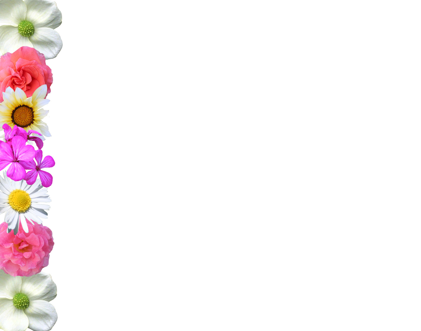 Floral Side Border Design Png
