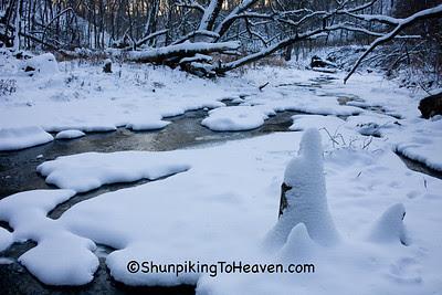 Skillet Creek in Winter, Sauk County, Wisconsin