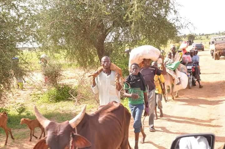 Residents Flee As Armed Bandits Kill Over 40 During Attacks In Zamfara (Photos)