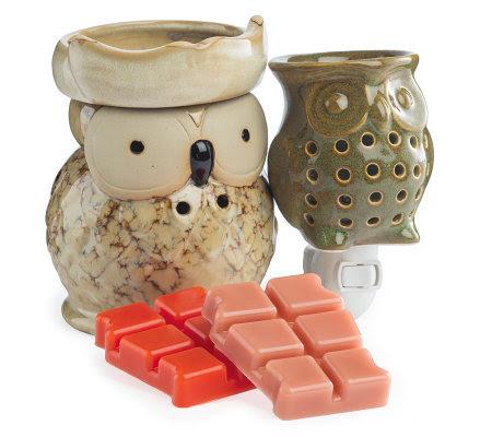 Candle Warmers Ceramic Owl Warmer, Plug-In, 2 2-oz Wax ...