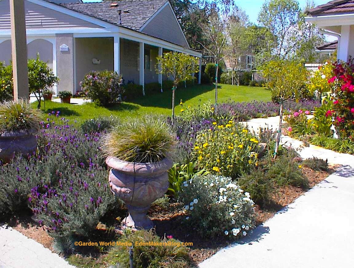 17 Excellent No Grass Landscaping Pictures Landscape Ideas