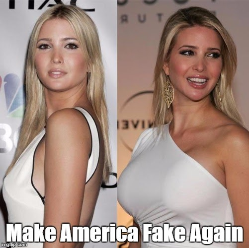 Image result for pax on both houses ivanka