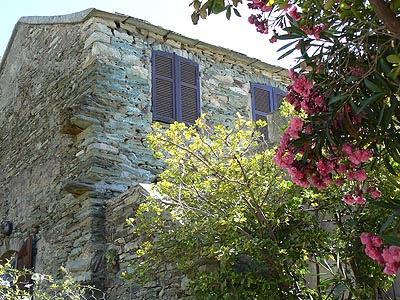 maison fleurie centuri.jpg