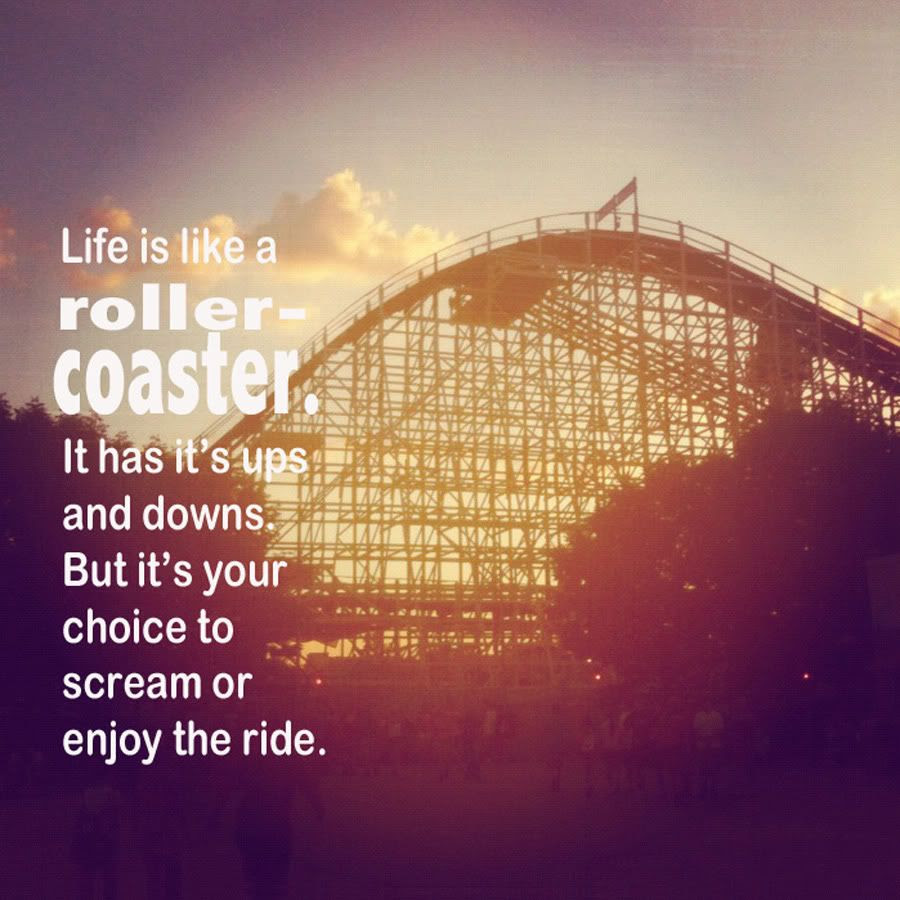 Project Alicia Ww Life Is Like A Rollercoaster
