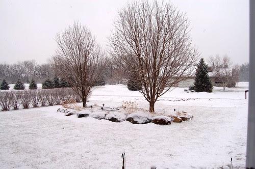 One last snowfall...hopefully?