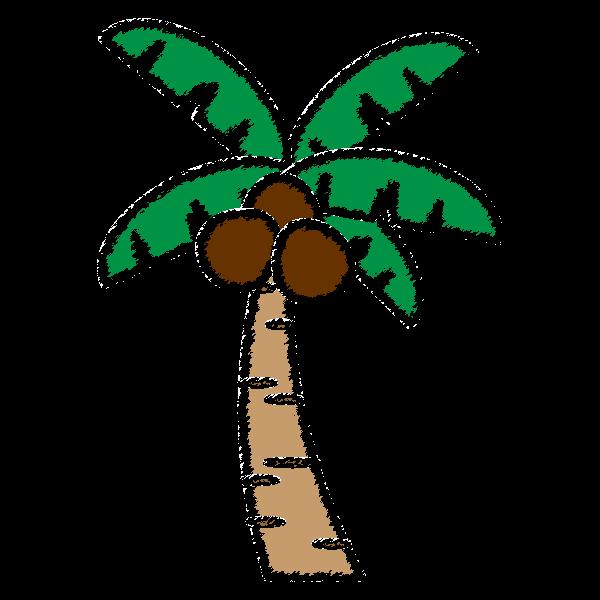 手書き風でかわいいヤシの木の無料イラスト商用フリー オイデ43