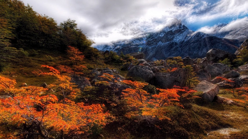 825x315 Hd Nature Wallapers Facebook Cover Photo