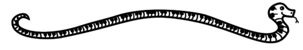 the keyboard snake