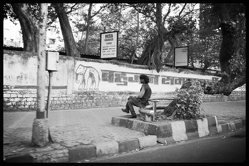The Madman of Byculla by firoze shakir photographerno1