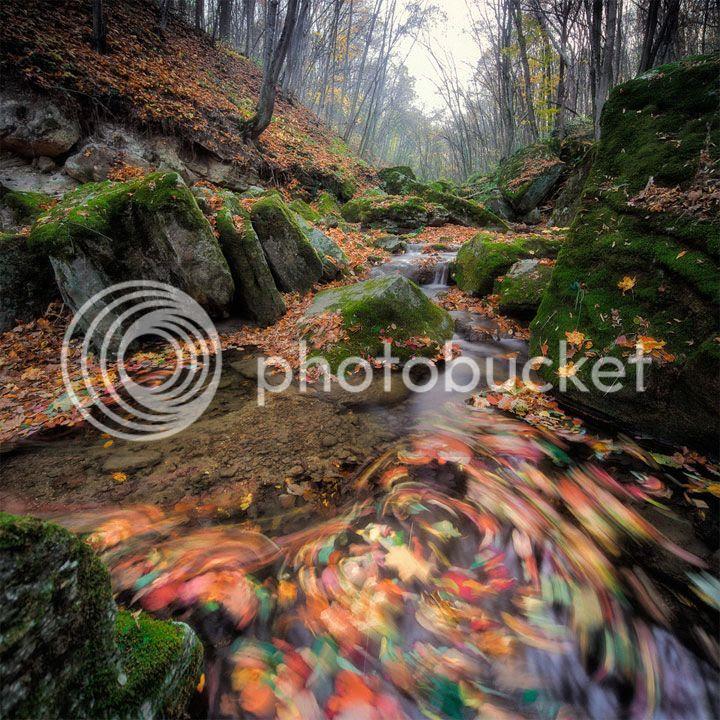 photo Sergey-Braga-5_zps635f5953.jpg
