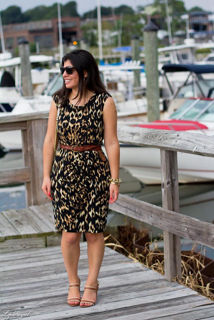 leopard dress 1