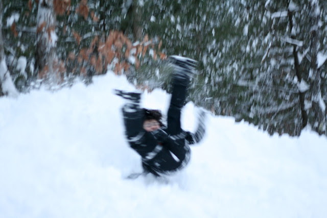 Adam tumbles down the snow bank