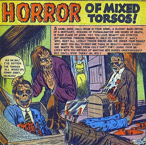 Horror of Mixed Torsos