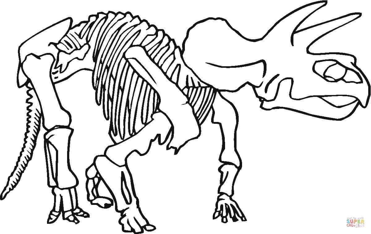 er sur la Squelette de dinosaure coloriages pour visualiser la version imprimable ou colorier en ligne patible avec les tablettes iPad et Android