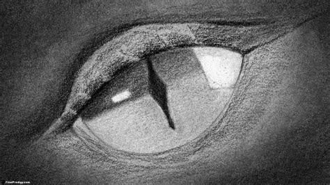 draw  dragons eye close  drawing