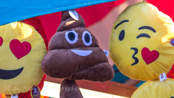 Poop hat prize