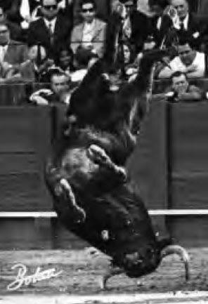 TAUROMAQUIAS (http://cesarteran.blogspot.com/)
