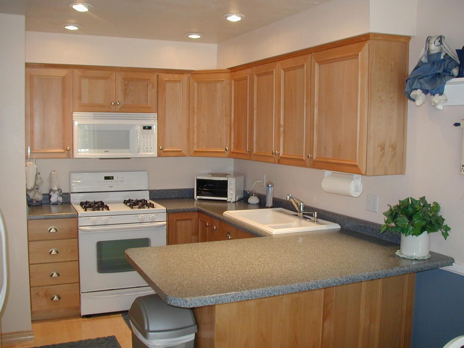6149d1186530586 stainless vs white appliances kitchen 1