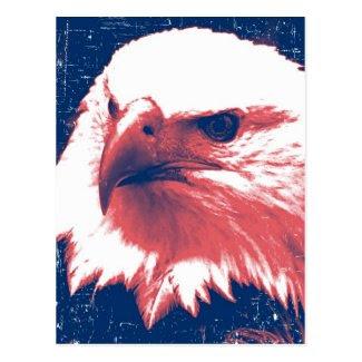 Patriotic Eagle - Grunge Art Postcard