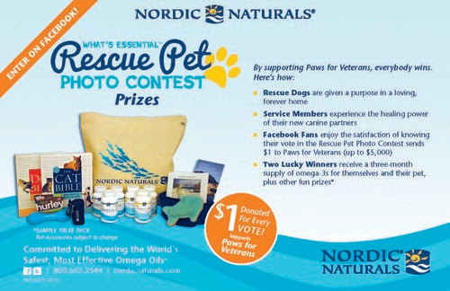 WHAT'SESSENTIALPETPHOTOCONTEST-FLYER_Page_2