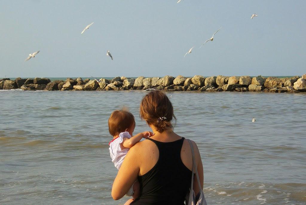 Guarda che #mare, guarda che #gabbiani !
