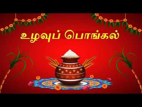 5Th std -Term 2-Tamil-Unit 3- Page No 43- உழவுப் பொங்கல்