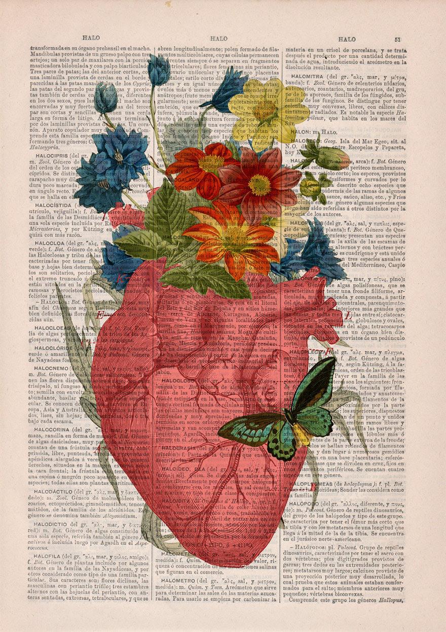 ilustraciones-anatomicas-flores-libros-viejos-prrint (7)