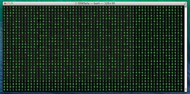 Scrolling binary terminal window