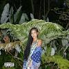 Jhené Aiko - None of Your Concern (feat. Big Sean) (Clean / Explicit) - Single [iTunes Plus AAC M4A]
