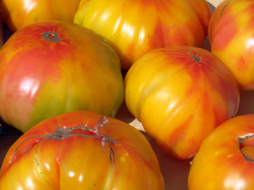 001 tomatoes, copy