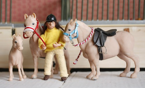 Foal, Stallion and Mare