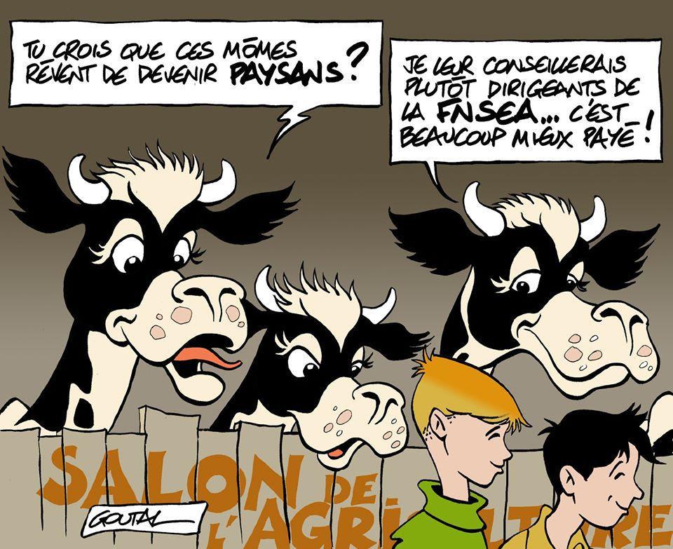 Lu dans le Parisien: «Ils sont déconnectés» : les salaires des dirigeants la FNSEA fâchent les agriculteurs
