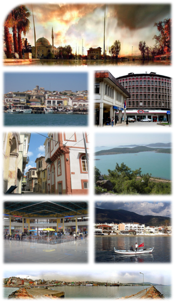 File:Lupus-Collage Balıkesir.png
