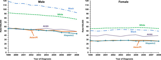Line charts showing the changes in lung cancer incidence rates for males and females of various races and ethnicities.