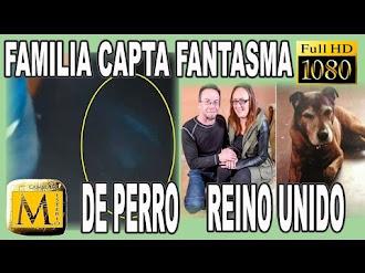 Familia Graba En Video El Fantasma De Perro Fallecido